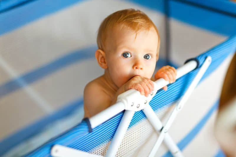 Portrait of baby in playpen