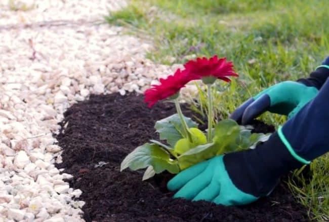 Огородные перчатки – лучший защитник рук