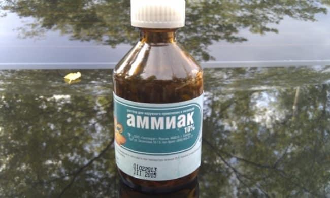 Аммиак – лекарство против гари