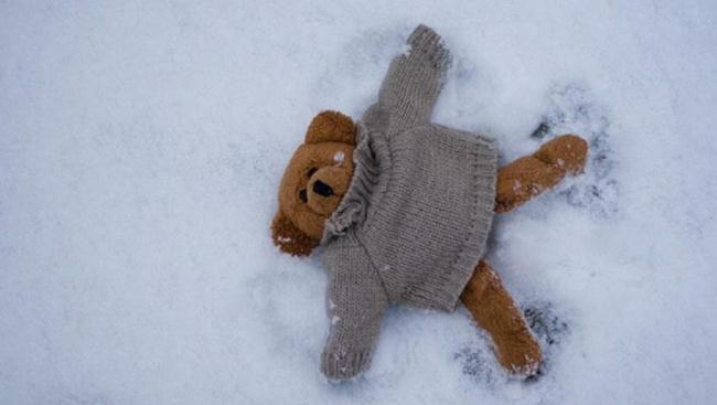 Игрушки которые нельзя стирать, можно почистить снегом