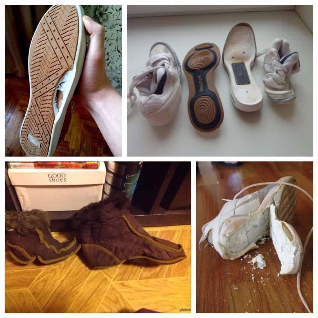 Последствия стирки некачественной обуви в машине
