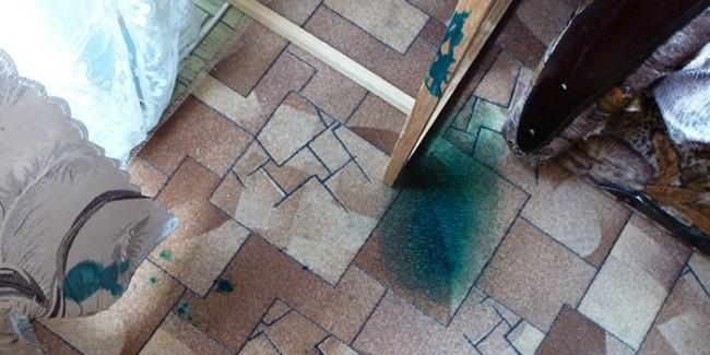 Зеленка на ковре