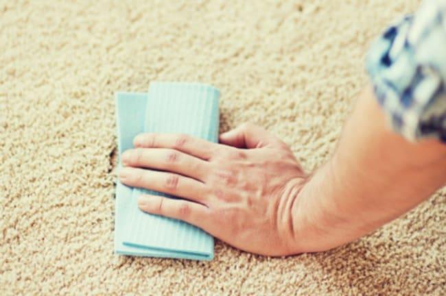 Если пятно свежее то его можно с легкостью вывести специальным средством для очистки ковров