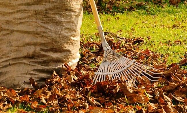 Живя в своем доме, не забывайте про уборку двора