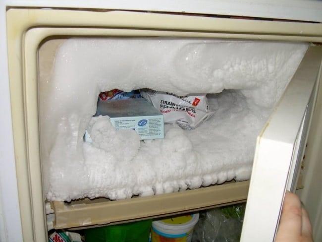 запущенная морозилка является разносчиком бактерий и неприятного запаха