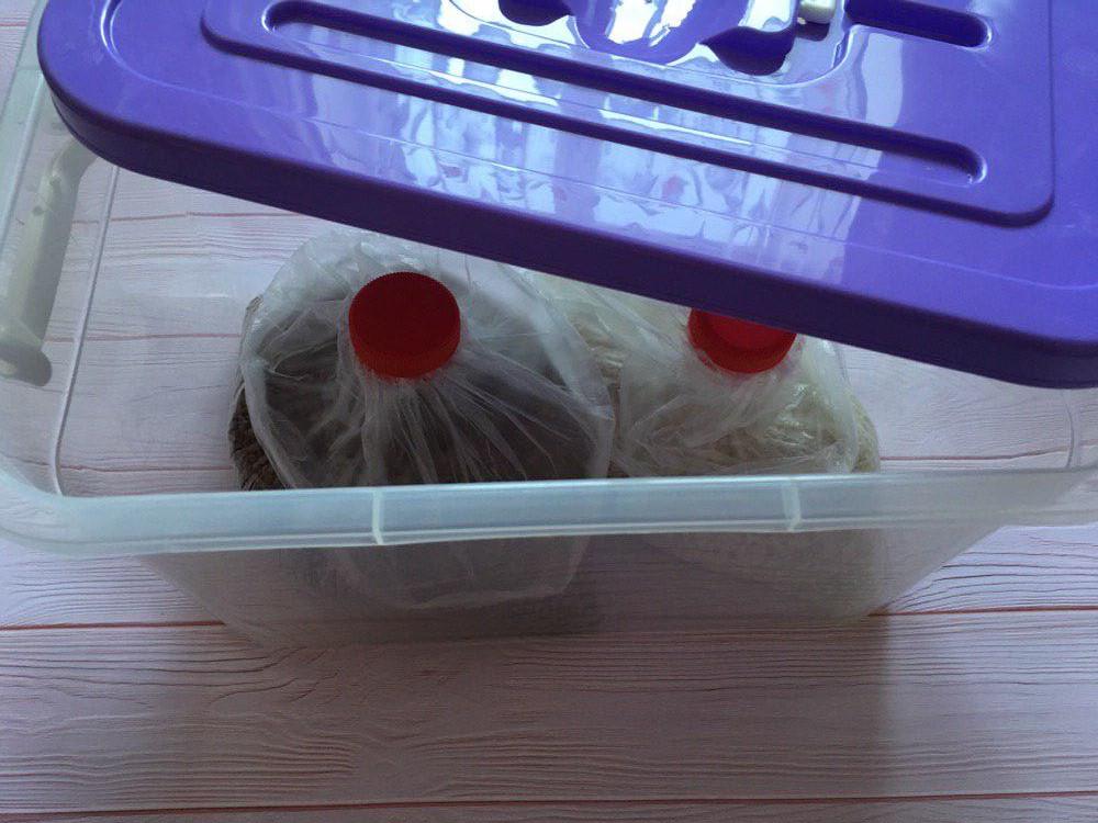 В контейнере хранить еще удобнее
