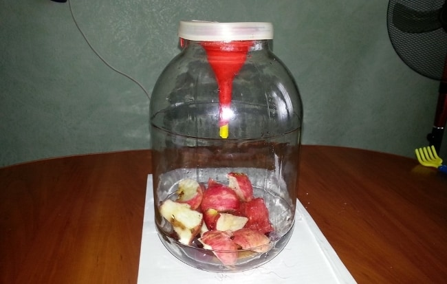 Аромат яблока привлекает мошек и других насекомых