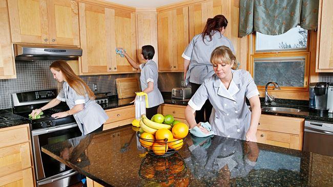 Клининговая служба избавит кухню от мошек