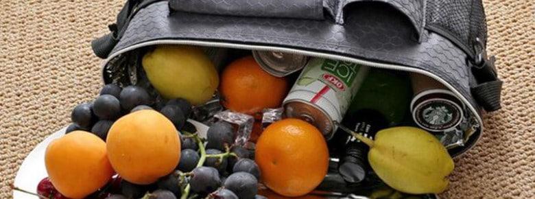 Для чего нужна сумка-холодильник