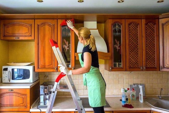 Генеральная уборка квартиры, также избавит от мушек