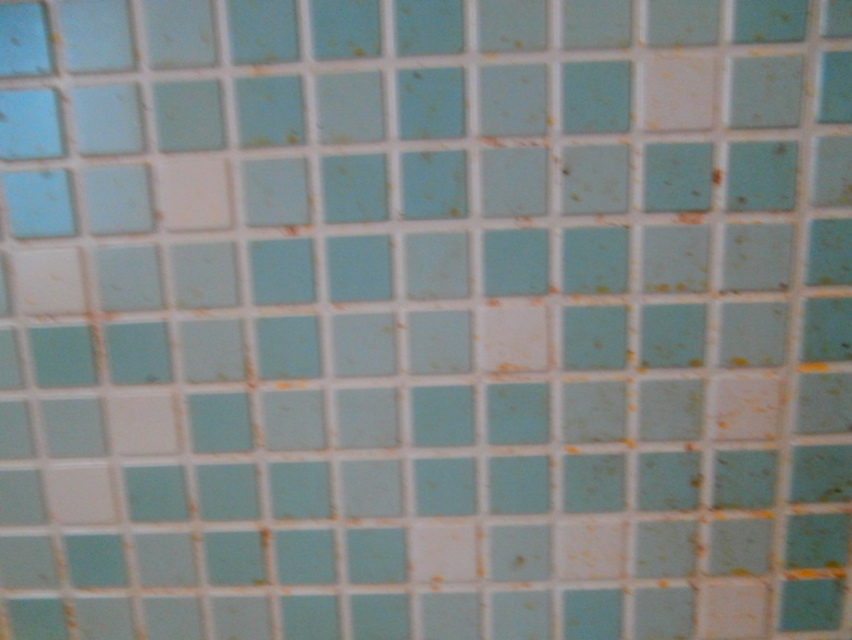 2. Стена до ее мытья.JPG