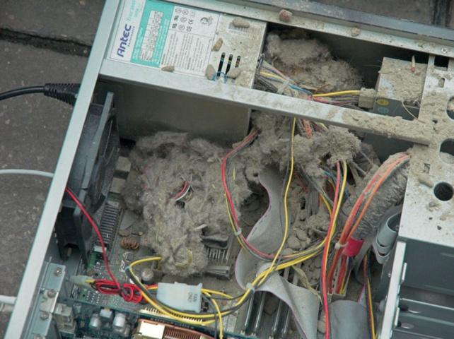 Системный блок в пыли