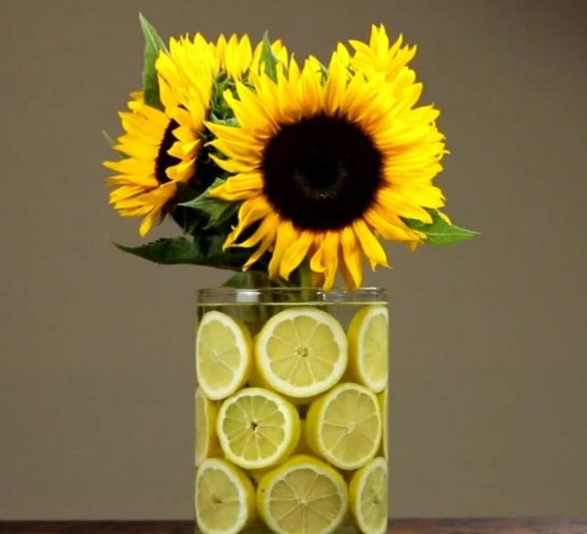 ваза из натуральных лимонов