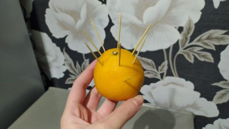 мандарин от мошек