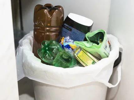мусорное ведро вынести