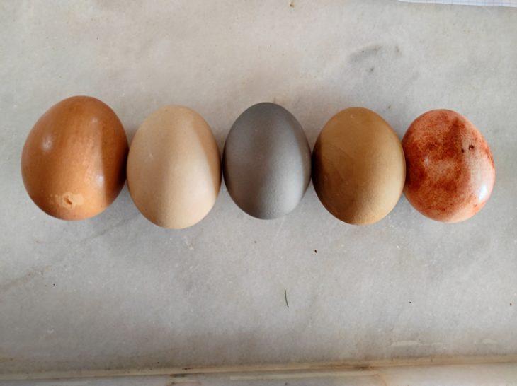 покрасить яйца в домашних условиях